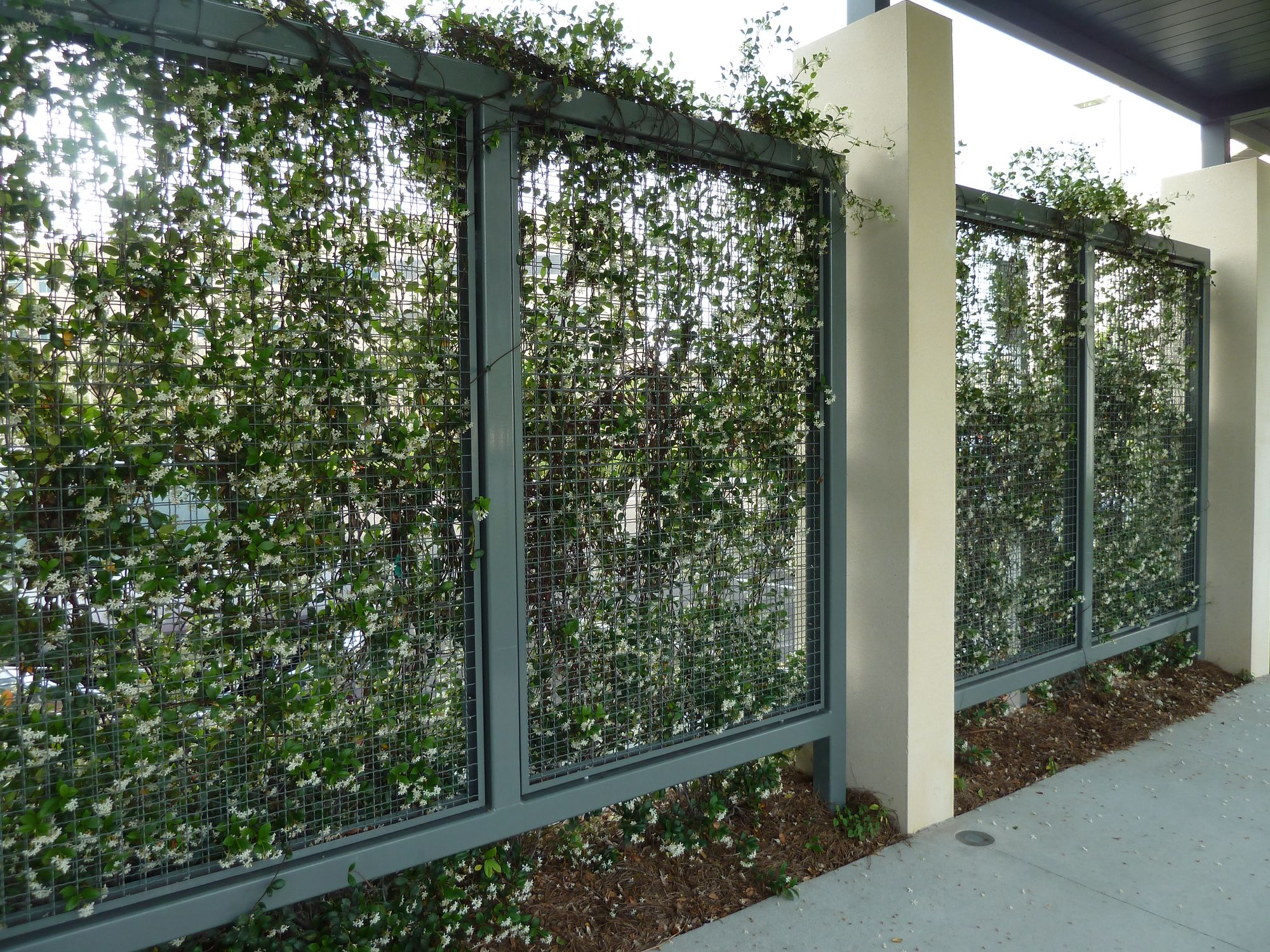 Wire Mesh metal infill panels used to create plant walls