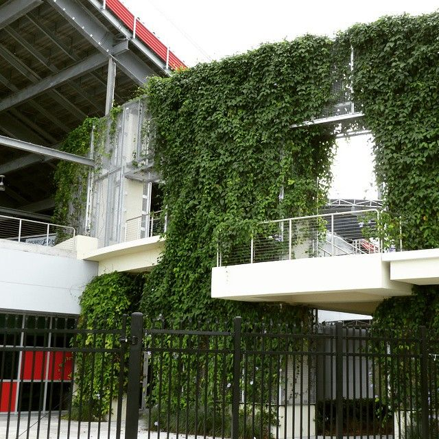 FAU's football stadium uses ECO-MESH to create an eye-catching green wall