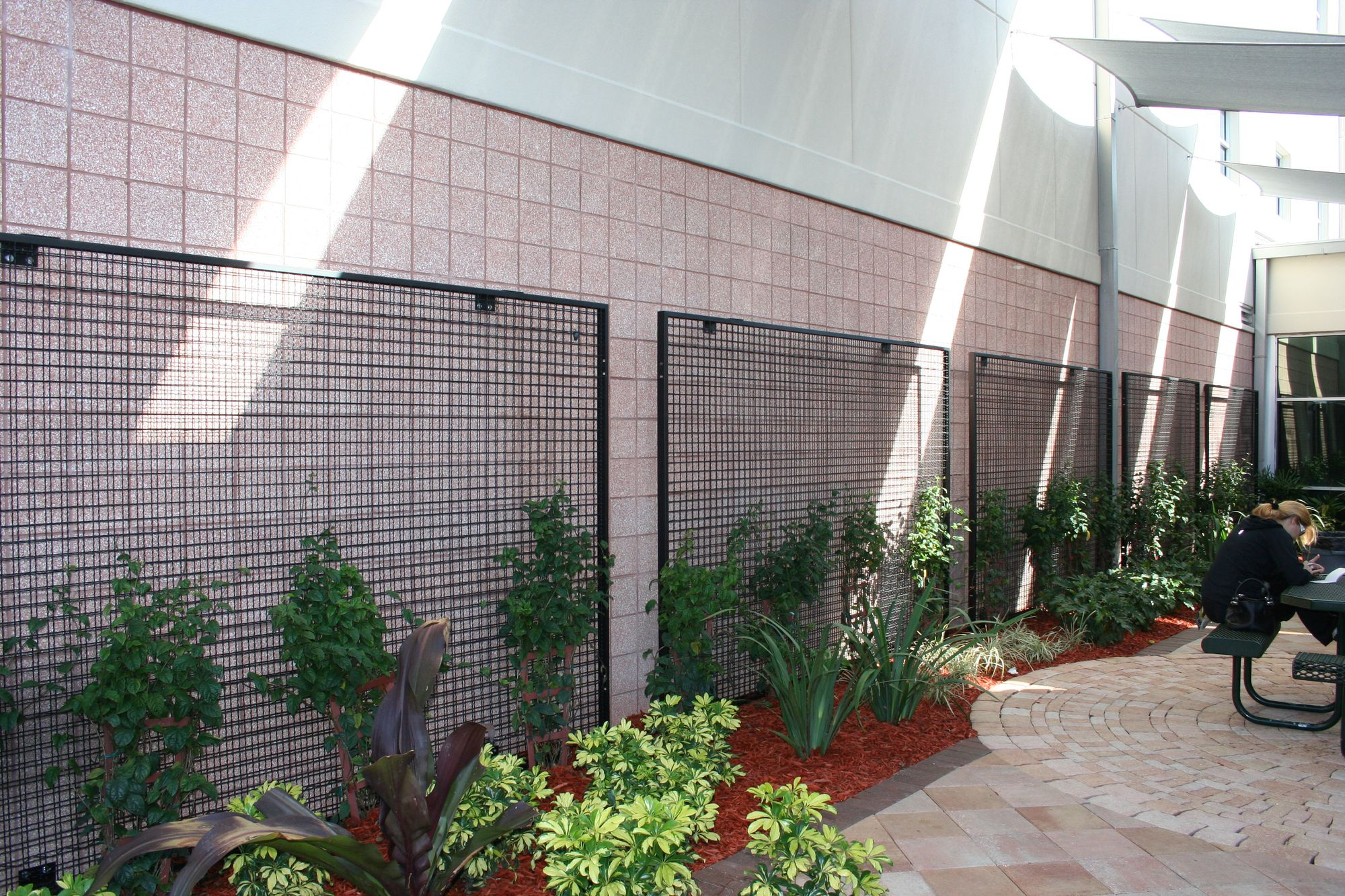 Tampa Preparatory School utilizing ECO-MESH panels to bring a green environment near their lunch tables