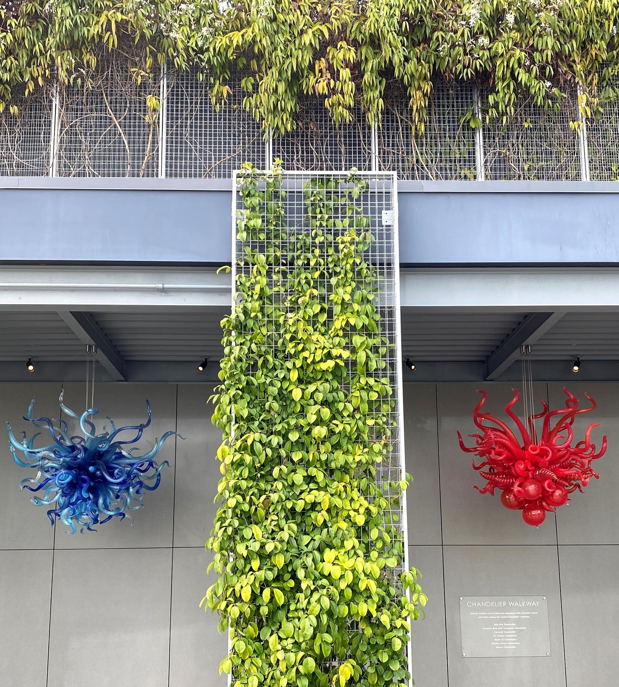 living wall created with McNICHOLS ECO-MESH